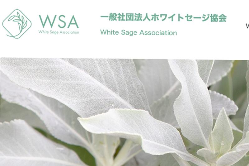 WSA ホームページを公開いたしました